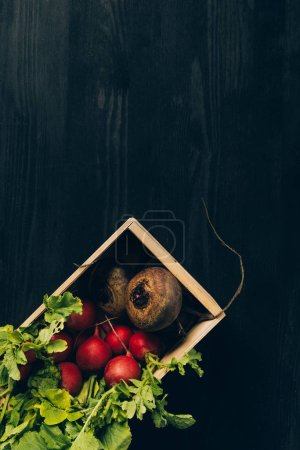 Photo for Top view of radishes and beetroots in wooden box on grey dark table - Royalty Free Image