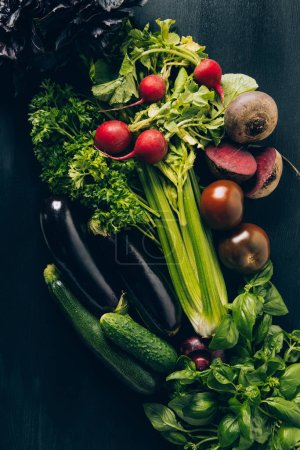 top view of celery, radishes, eggplants and cucumbers on grey dark table