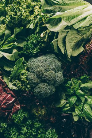 top view of broccoli and leafy vegetables and herbs on table