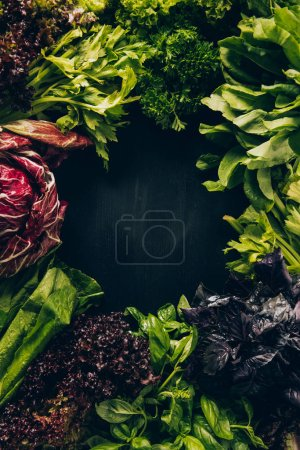 Photo for Top view of different leafy vegetables and herbs on grey dark table - Royalty Free Image