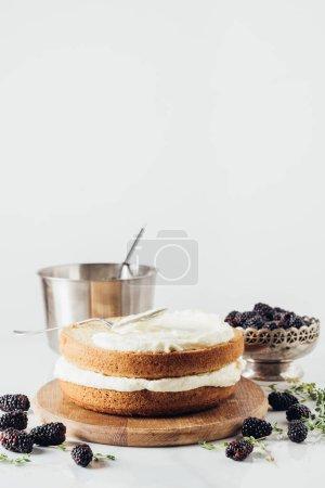 Photo pour Gros plan du gâteau fraîchement cuit avec de la crème sur une planche de bois arrondie avec des mûres sur blanc - image libre de droit
