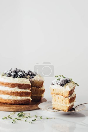 close-up shot of delicious sliced blackberry cake
