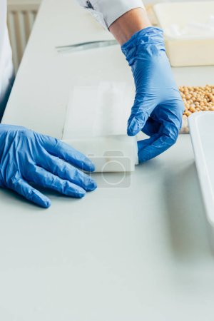 Photo for Cropped image of biologist in latex gloves working at table with seeds in agro laboratory - Royalty Free Image