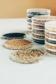close up view of various seeds in plastic containers in modern agro laboratory