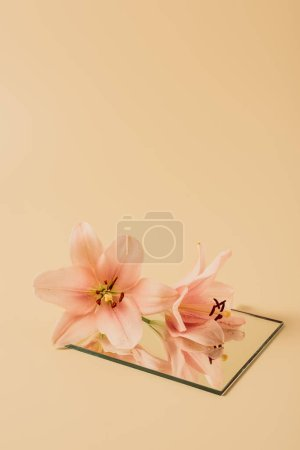 lily flowers reflecting in mirror on beige table