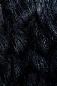 vue de dessus de fourrure textile noir comme toile de fond