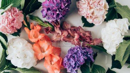 Foto de Vista superior de coloridas flores, hortensias y gladioluses en superficie de mármol - Imagen libre de derechos