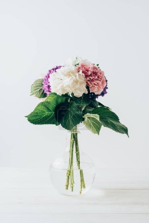beautiful colorful hydrangea flowers in glass vase, on white