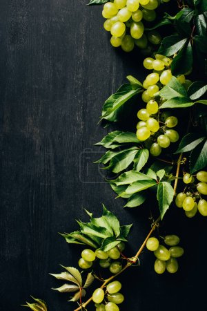 top view of fresh ripe white grapes and green leaves on black wooden background