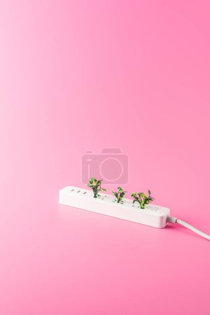 close-up view of socket outlet and green twigs isolated on pink, renewable energy concept