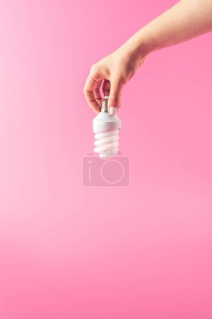 close-up partial view of person holding light bulb isolated on pink