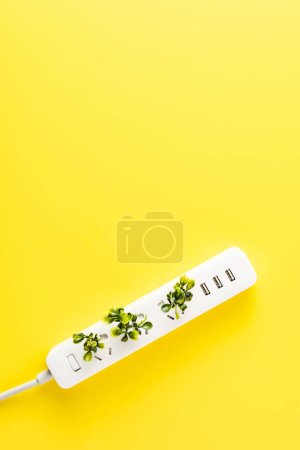 Photo for Top view of socket outlet with twigs on yellow background, green energy concept - Royalty Free Image