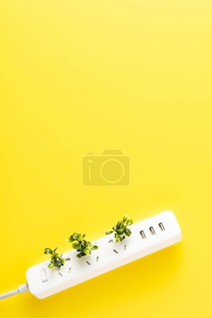 Photo for Top view of socket outlet with green twigs on yellow background, renewable energy concept - Royalty Free Image