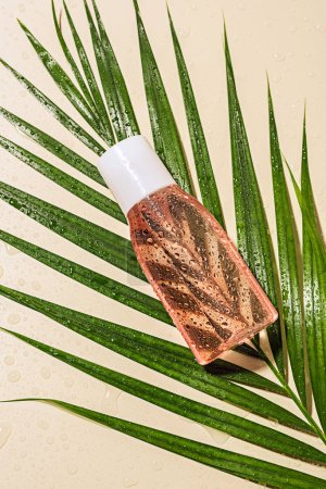 top view of micellar water on green palm leaf with water drops on beige background