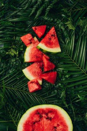 vue du dessus de pastèque rouge sucrée sur les feuilles de palmier