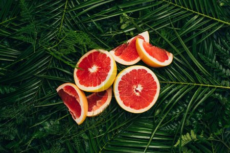 Photo for Top view of fresh grapefruit slices on palm leaves - Royalty Free Image