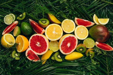 top view of fresh tropical fruits on palm leaves