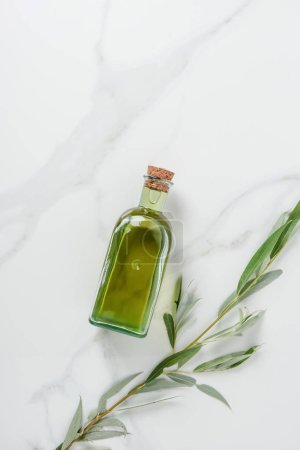 top view of bottle of olive oil and twig on marble table