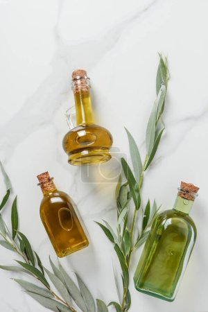 top view of bottles of three bottles of olive oil and twigs on marble table
