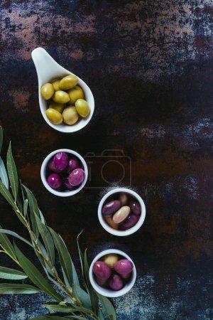 vue de dessus des ingrédients pour l'huile d'olive et des brindilles sur surface minable