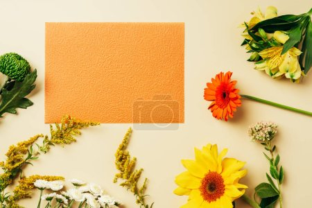 flat lay with various wildflowers around blank orange card on beige background