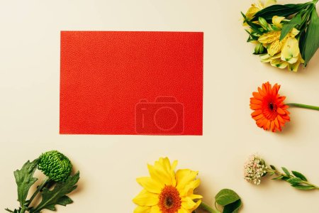 top view of empty red banner and arranged flowers on beige backdrop