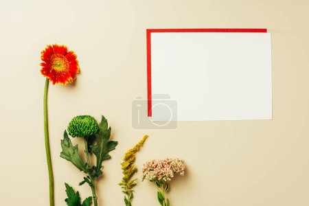 flat lay with arrangement of red and white blank cards and beautiful flowers on beige backdrop