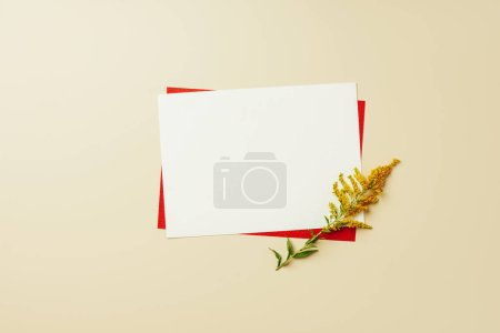 flat lay with arrangement of red and white blank cards and beautiful wildflower on beige backdrop