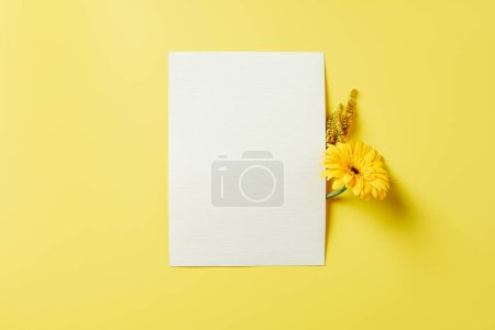 Photo for Top view of flowers and white blank card on yellow backdrop - Royalty Free Image