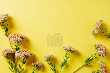 flat lay with beautiful wildflowers arrangement on yellow background