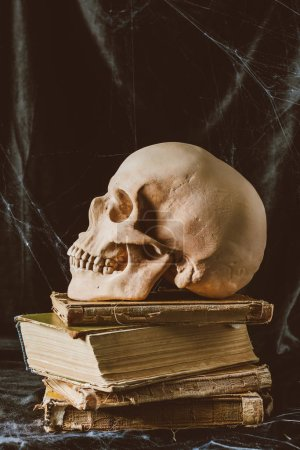 halloween skull on ancient books on black cloth with spider web, gothic witchcraft