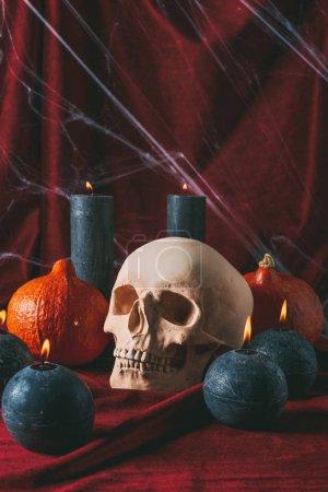 Photo pour Crâne de chair de poule, les citrouilles et les bougies noires sur tissu noir avec toile d'araignée, décorations d'halloween - image libre de droit