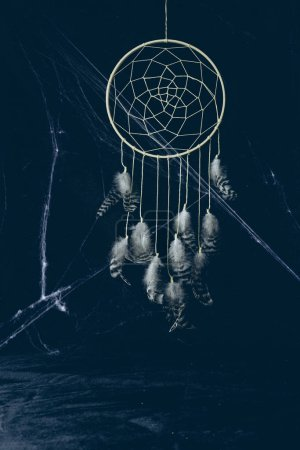gothic dreamcatcher with feathers in darkness with spider web for halloween
