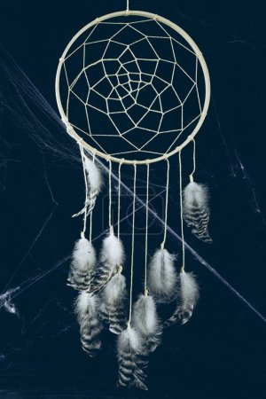dreamcatcher with feathers in darkness with spider web