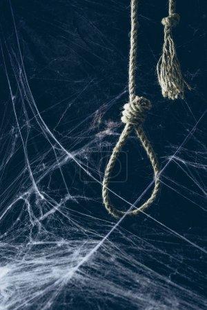hangman noose hanging in darkness with spider web, creepy halloween decor