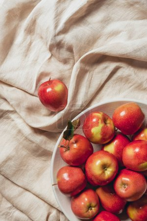 red apples in white bowl on sacking cloth