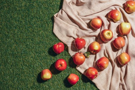 Photo for Top view of red apples on sacking cloth and green grass - Royalty Free Image