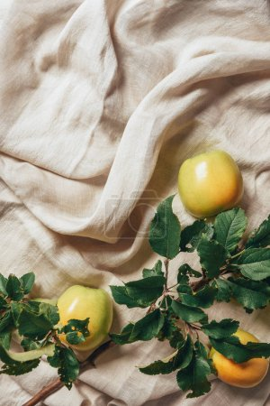 top view of yellow apples with apple tree leaves on sacking cloth