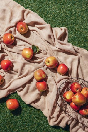 top view of red apples in metal basket sacking cloth and green grass