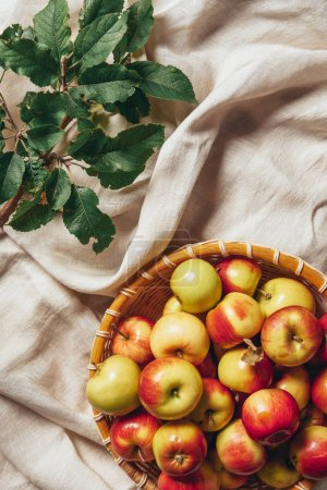 top view of apples in wicker basket with apple tree leaves on sacking cloth
