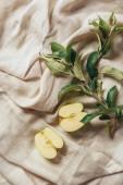 "Постер, картина, фотообои ""две половинки яблоко с apple листьев на ткань Мешковина"""