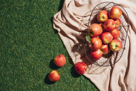 red apples in metal basket on sacking cloth and green grass