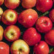Top view of red apples on green grass