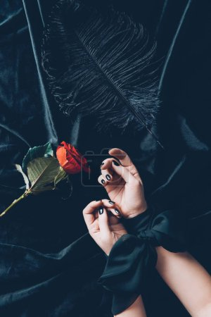 cropped shot of woman with tied hands and red rose flower with black feather on fabric