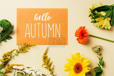 """flat lay with various wildflowers around orange card with """"hello autumn"""" lettering on beige background"""