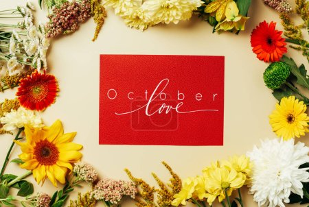 """flat lay with various beautiful flowers and red card with """"october love"""" inspiration on beige background"""