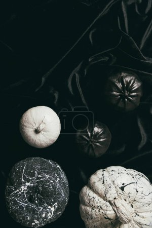 Top view of decorative black and white painted pumpkins on black cloth with  copy space, halloween design