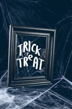 "black frame in spider web, creepy halloween decor with ""trick or treat"" lettering"