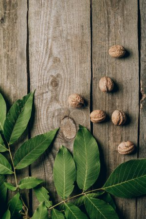 top view of whole organic walnuts and green leaves on wooden table