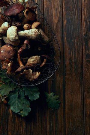vue de dessus des produits frais cueillis champignons comestibles dans le panier et de feuilles de chêne vert sur la table en bois
